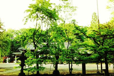 suzaka_0522_03.jpg